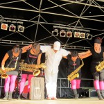 Multi-Kulti-Festival Neustadt